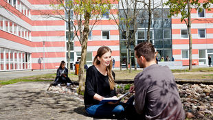 Two students sit under a tree in the courtyard of the Lichtenberg campus and talk to each other.